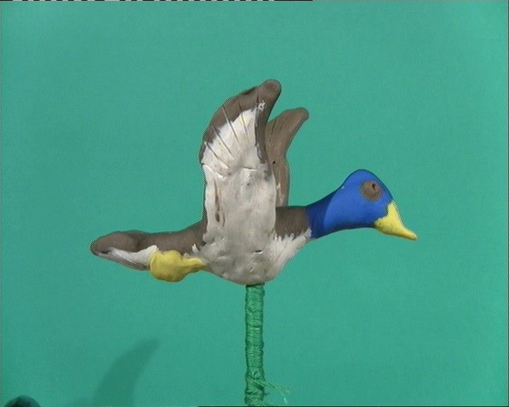 the duck 5-+-1_00001